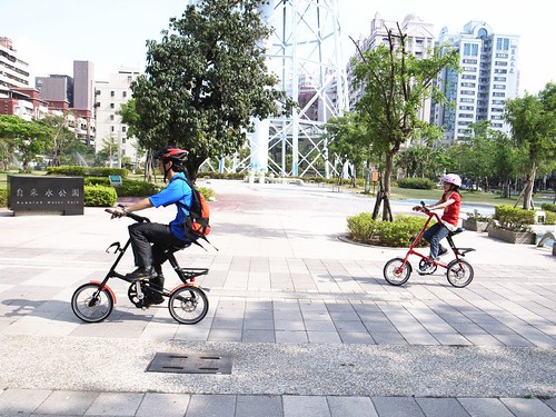 small wheel (folding bike)