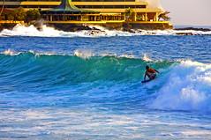 Surfin' photo by Bill Adams