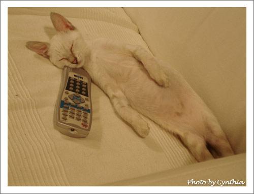 遙控器當枕頭很不錯唷
