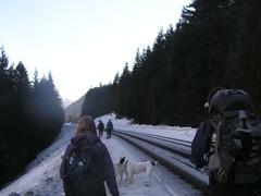 Railroad tracks - heading east