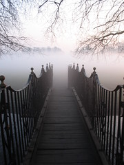 Into the fog photo by raindog