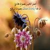 43921633882_baee81dfed_t