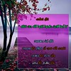 43251569174_3b5efc9b36_t