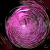 43096468035_e6f04b9fa0_t