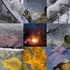 trip to beach, snow & slash fire mosaic