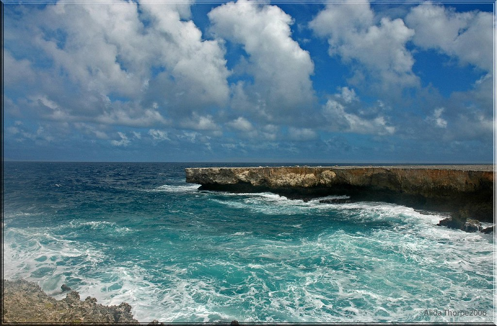 Bonaire's Windward Shore