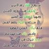43921709932_4b5ef3e96a_t