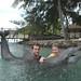 Dolphin experience Tahiti