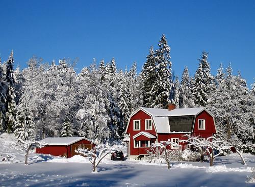 Winter Landscape (by Steffe)