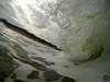 44402148771_bd2ecfa7c1_t