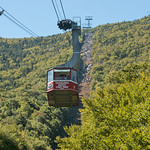 9/14/18 The leaves are starting to change and a Tram ride is a great way to take in the Fall views!