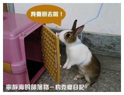 約克夏日記_20060215_不習慣繩子