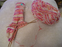 sock_in_progress