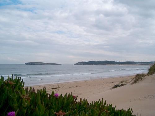 116483414 aba6467478 Las olas de hoy Miercoles, 22 de Marzo de 2006  Marketing Digital Surfing Agencia
