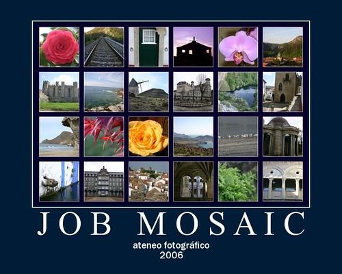 mosaico 100 días