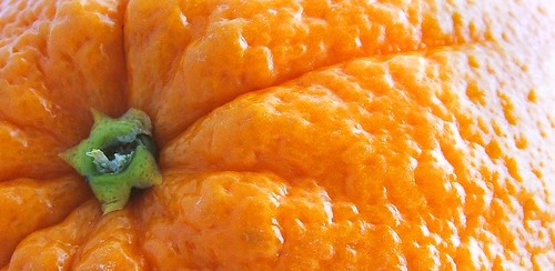orange: close up best viewed large
