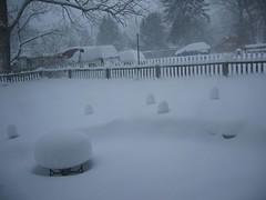 Snow 12 Feb 06