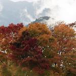 10/4/18 Peak foliage in the Notch