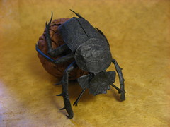 Dung Beetle II photo by MABONA ORIGAMI