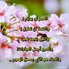 45440325541_6eae3564a4_t