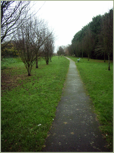 Path along the old line