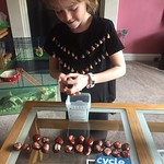 Conker selection<br/>13 Oct 2018