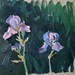 'Last of the irises', 40x40cm, OIl on board