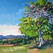 'The oak tree', 51x36, Oil on board
