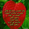 43379472550_e133780990_t