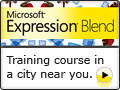 Expression Blend Training