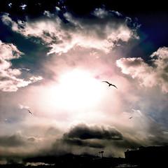 Sunshine photo by Badison