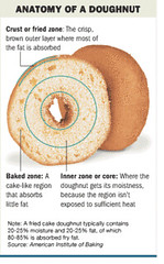 anatomy of a doughnut