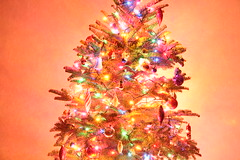 Long Exposure Christmas Tree.   Photo by danec.
