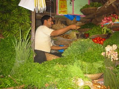 matungamarket