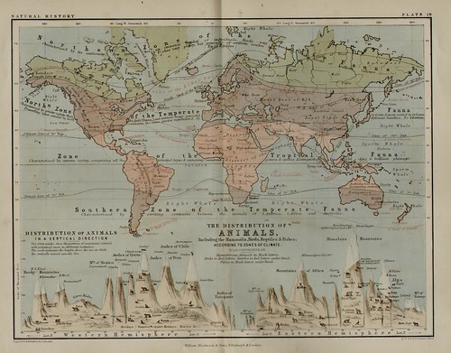 blackwood-and-sons_keith-johnsons-physical-school-atlas_1852_natural-history-distribution-of-animals