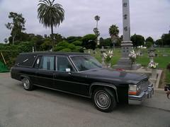 rental hearse
