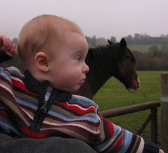 Man meets horse
