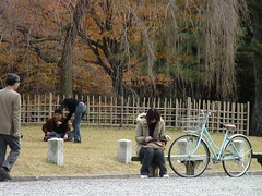 Kyoto: Imperial Gardens on the Verge of Winter