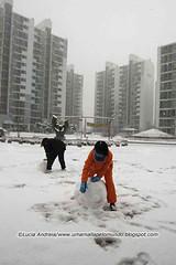 Crianca fazendo bola de neve