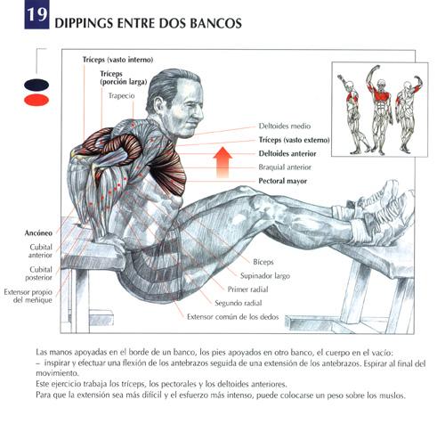 El tratamiento mágico de la columna vertebral