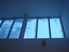 Snow on Skylight