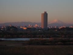 sunrise over tokyo #1