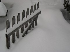 Winter Fence Keeps Silent Vigel