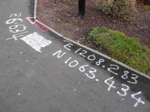 Survey Vandalism