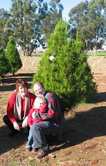 Nana_Papa_Hannah_tree