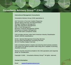 Consutants Advisory Group page