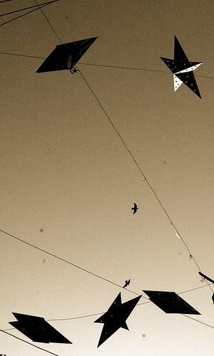 Stars & Bhramani Kites