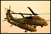 "UH-60 Blackhawk "" YANSHUF""  Israel Air Force"