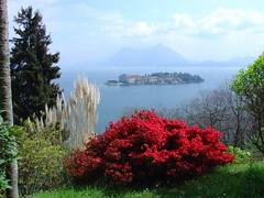 Lago Maggiore  isola Bella  (Italy) photo by felix cat 46