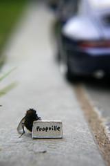 Poopville photo by ukaaa